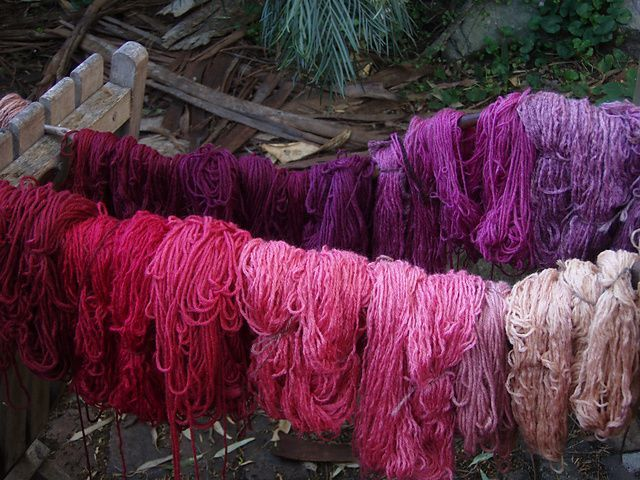 Cochineal-dyed thread